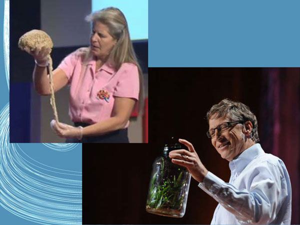 TED vortrag